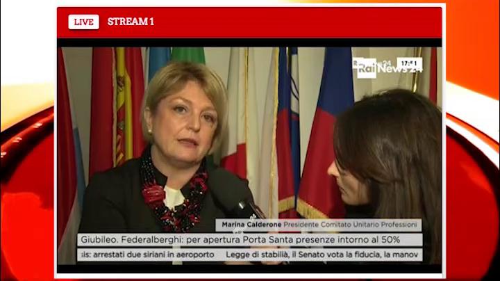 RaiNews24 Intervista Marina Calderone 20.11.2015-18.20