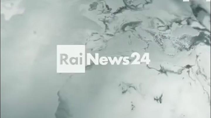 RaiNews24 29.12.2015 Intervista Enzo De Fusco