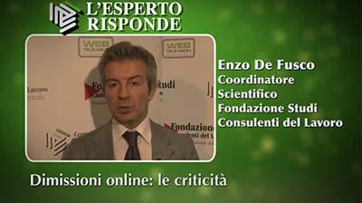 Enzo De Fusco - Dimissioni online: le criticità