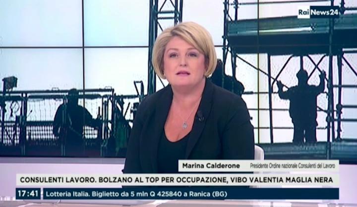 RaiNews24 - Intervento di M. Calderone del 07.01.2017