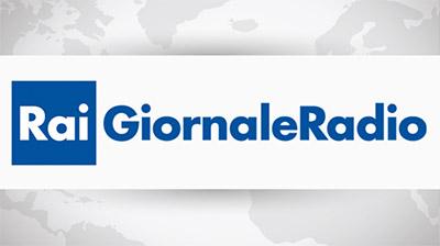 Rai Radio 2. GR2 del 02.03.2017, Marina Calderone sui voucher