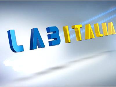 Convegno 14 febbraio 2014 - Labitalia intervista Marina Calderone