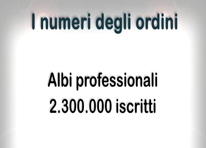 Professional Day 2013 - I numeri delle professioni