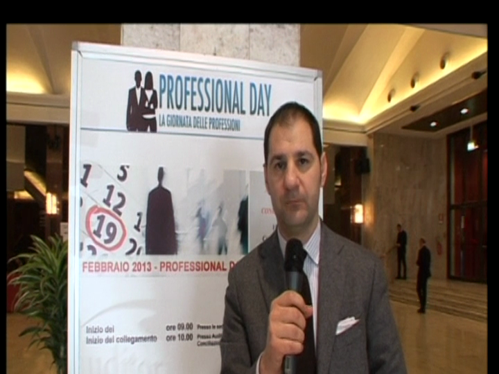 Professional Day 2013