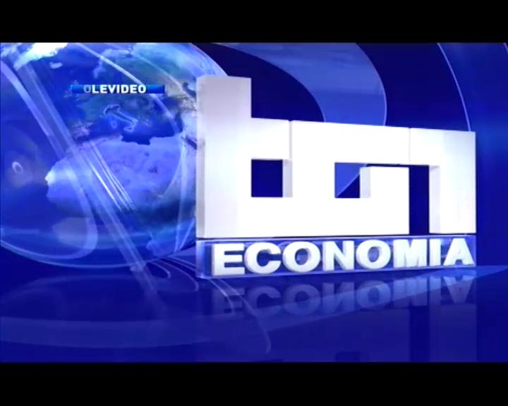 TG1 Economia del 27 giugno 2014 - Marina Calderone