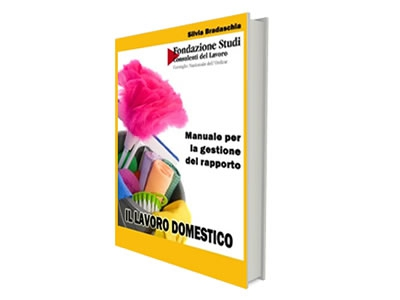 Promo guida lavoro domestico