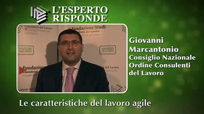 Giovanni Marcantonio - Le caratteristiche del lavoro agile