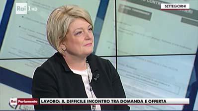 RAI 1. Settegiorni, 04.02.2017. M. Calderone