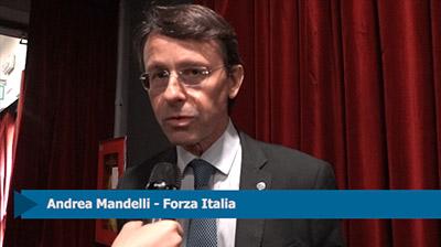 Intervista ad Andrea Mandelli