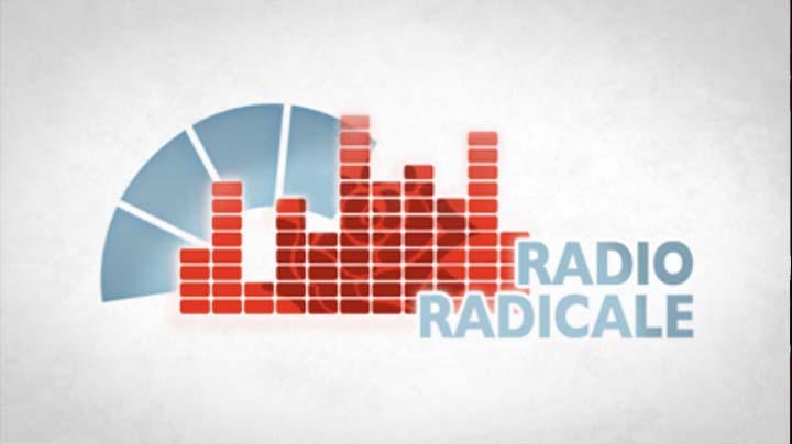 Radio Radicale del 30.07.2019 - Audizione CNO su ddl semplificazione lavoro
